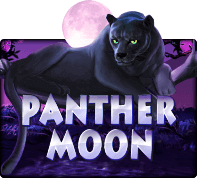 Panthermoon - SLOTXO