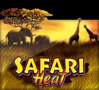 Safari Heat - SLOTXO