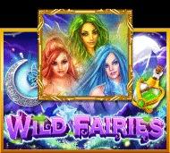 สมัครสล็อตxo wild fairies